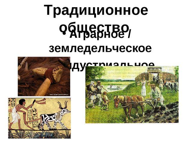 Традиционное общество Аграрное / земледельческое Доиндустриальное