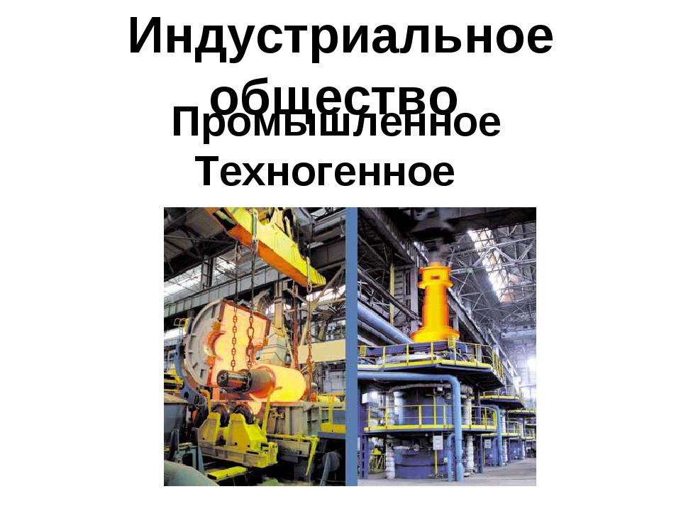 Индустриальное общество Промышленное Техногенное