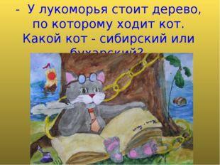 - У лукоморья стоит дерево, по которому ходит кот. Какой кот - сибирский или