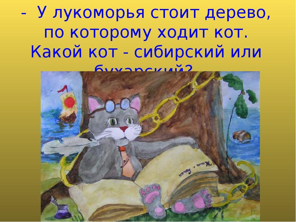 - У лукоморья стоит дерево, по которому ходит кот. Какой кот - сибирский или...