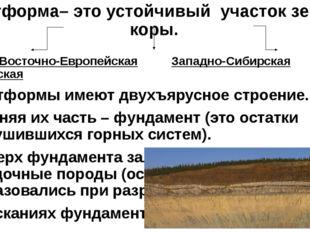 Платформа– это устойчивый участок земной коры. Восточно-Европейская Западно-С