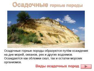 Осадочные горные породыобразуются путём осаждения на дне морей, океанов, рек