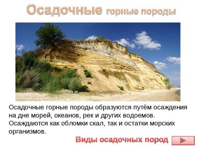 Осадочные горные породыобразуются путём осаждения на дне морей, океанов, рек...