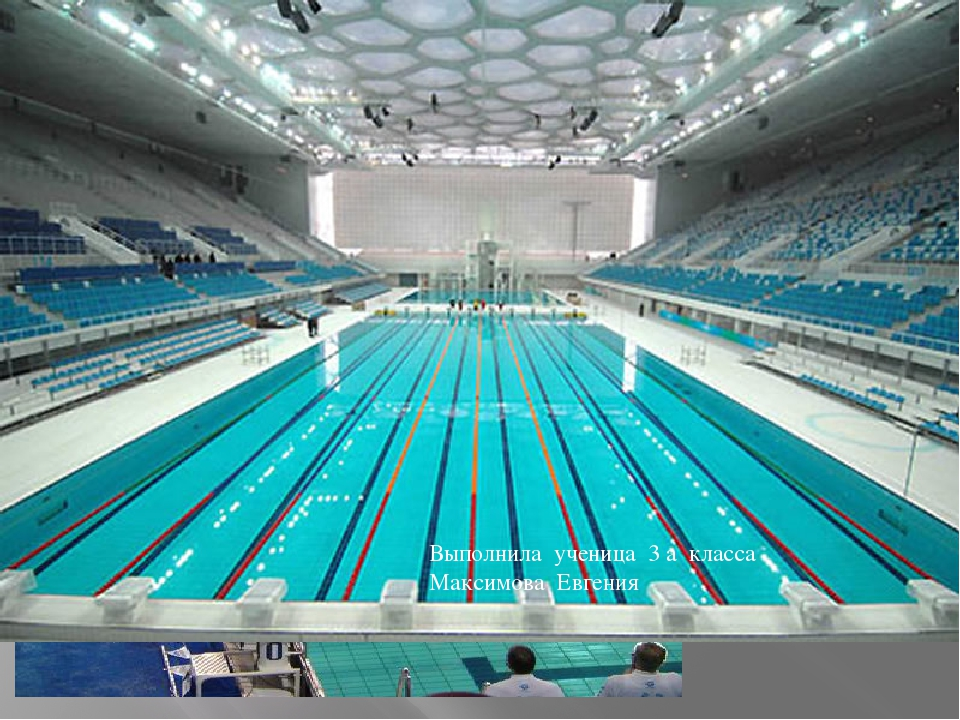 Плавание очень популярный вид спорта Выполнила ученица 3 а класса Максимова Е...