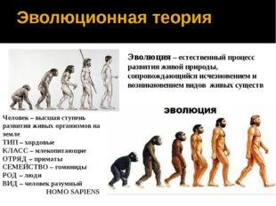 Эволюционная теория Эволюция – естественный процесс развития живой природы, с