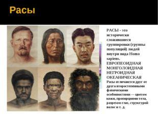 Расы РАСЫ - это исторически сложившиеся группировки (группы популяций) людей
