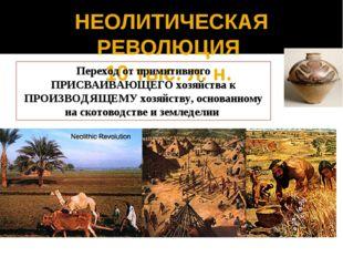 НЕОЛИТИЧЕСКАЯ РЕВОЛЮЦИЯ 10 тыс. л. н. Переход от примитивного ПРИСВАИВАЮЩЕГО