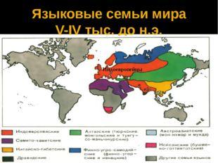 Языковые семьи мира V-IV тыс. до н.э. Индоевропейцы