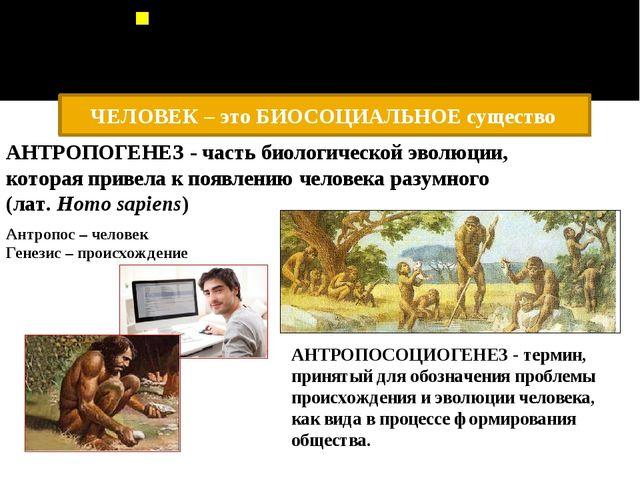 «В современной науке вопрос происхождения человека остается весьма дискуссион...