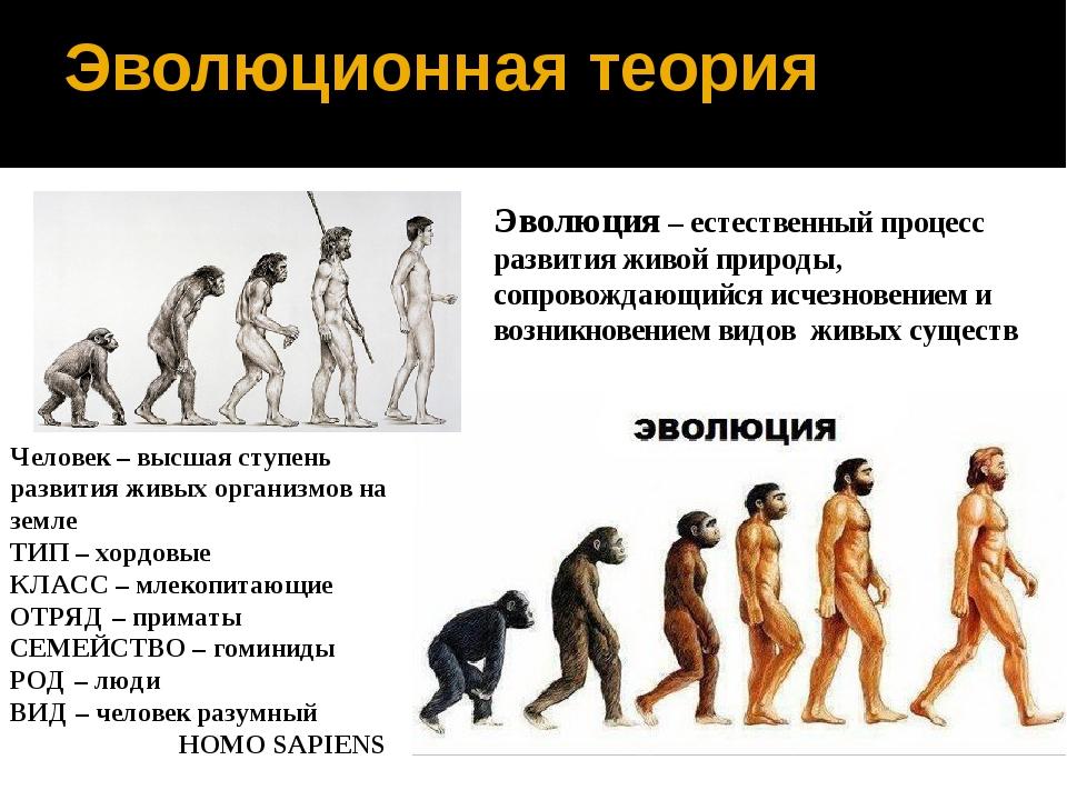 Эволюционная теория Эволюция – естественный процесс развития живой природы, с...