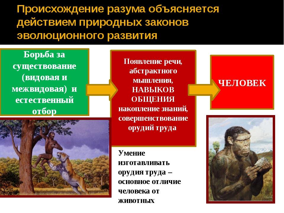 Происхождение разума объясняется действием природных законов эволюционного ра...