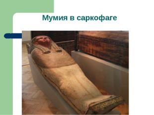 Мумия в саркофаге