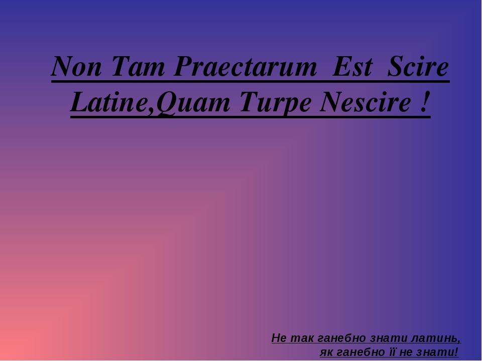 Non Tam Praectarum Est Scire Latine,Quam Turpe Nescire ! Не так ганебно знати...