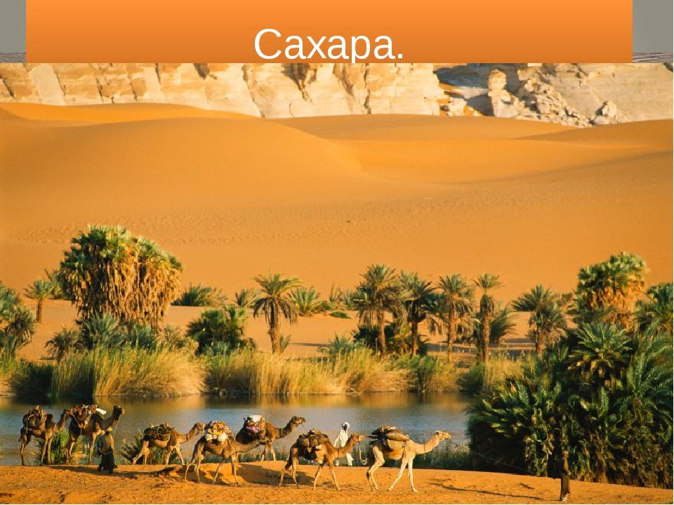 Сахара. хамады (гамады)