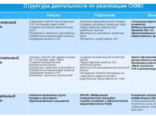 Структура деятельности по реализации СКМО АнализРефлексияВыход Поселенческ