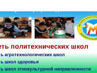 Сеть политехнических школ Сеть агротехнологических школ Сеть школ здоровья С