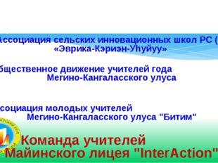 Общественно-образовательные объединения Ассоциация сельских инновационных шко