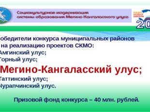 Победители конкурса муниципальных районов на реализацию проектов СКМО: Амгинс