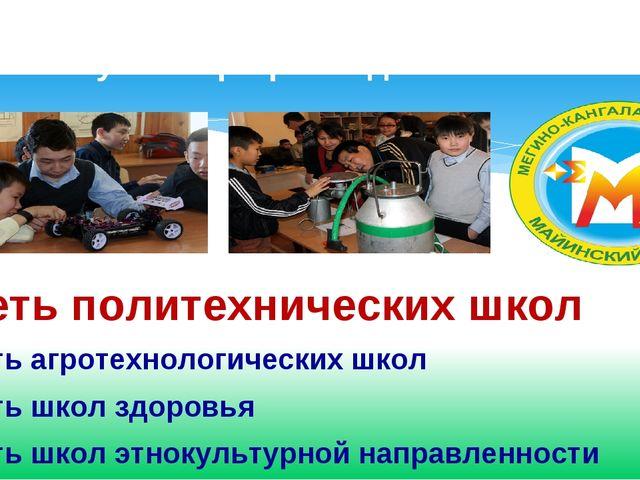 Сеть политехнических школ Сеть агротехнологических школ Сеть школ здоровья С...
