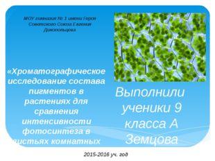 «Хроматографическое исследование состава пигментов в растениях для сравнения