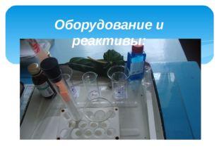 Оборудование и реактивы: