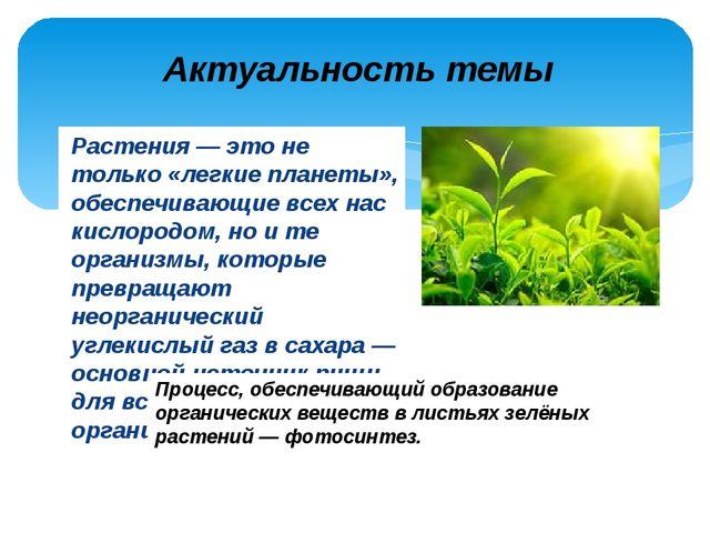 Растения — это не только «легкие планеты», обеспечивающие всех нас кислородом...