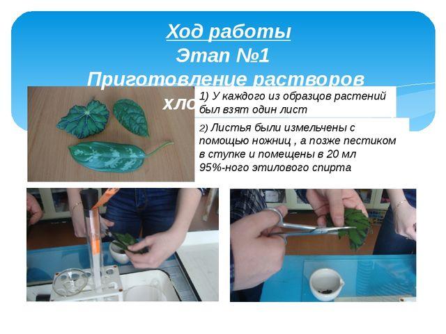 Ход работы Этап №1 Приготовление растворов хлорофилла 1) У каждого из образц...