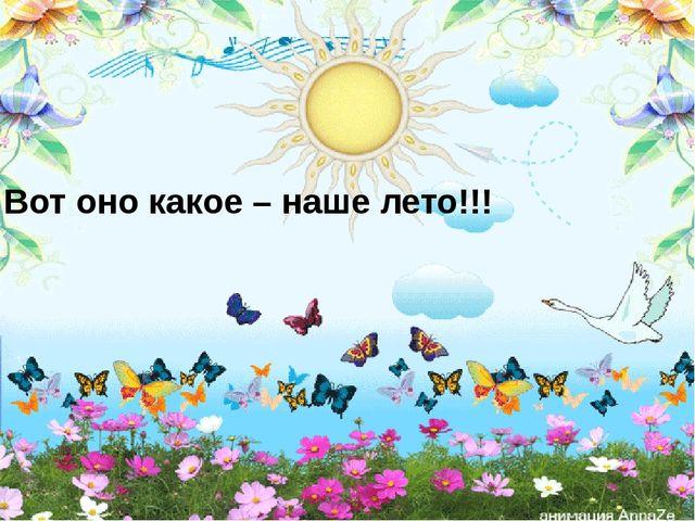 Вот оно какое – наше лето!!!