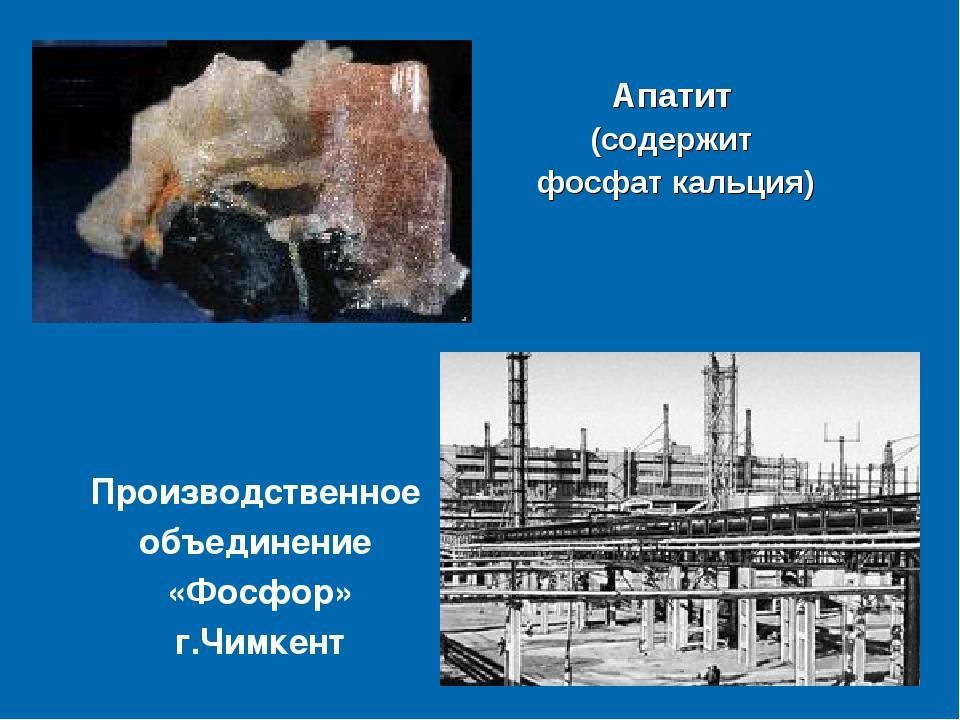 Апатит (содержит фосфат кальция) Производственное объединение «Фосфор» г.Чимк...