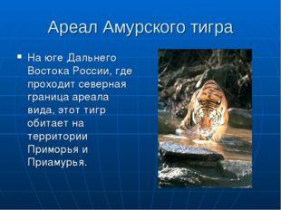Ареал Амурского тигра На юге Дальнего Востока России, где проходит северная г