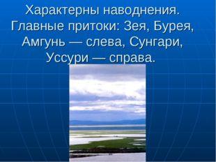 Характерны наводнения. Главные притоки: Зея, Бурея, Амгунь — слева, Сунгари,