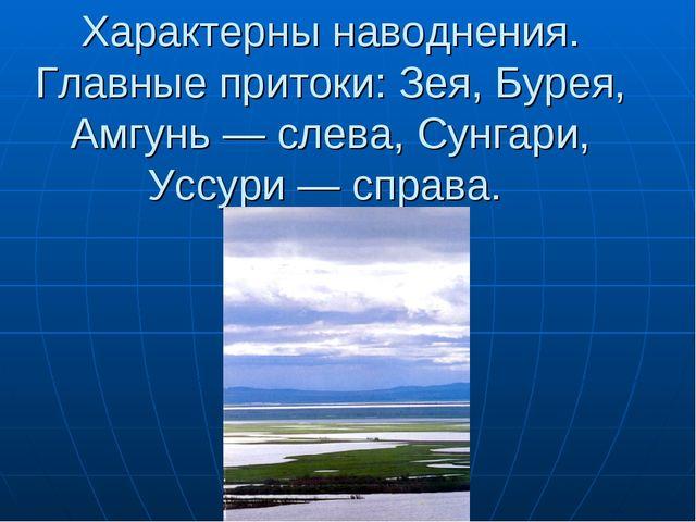 Характерны наводнения. Главные притоки: Зея, Бурея, Амгунь — слева, Сунгари,...