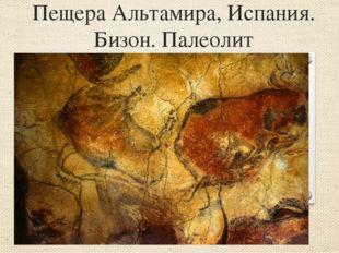 Пещера Альтамира, Испания. Бизон. Палеолит