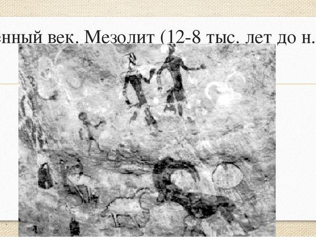 Каменный век. Мезолит (12-8 тыс. лет до н.э.)