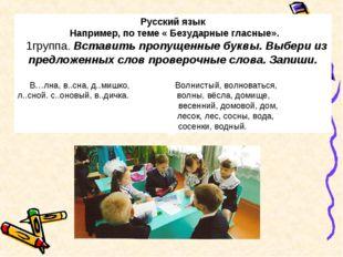 Русский язык Например, по теме « Безударные гласные».  1группа. Вставить пр
