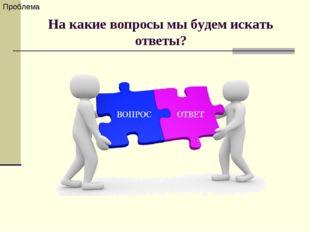 На какие вопросы мы будем искать ответы? Проблема