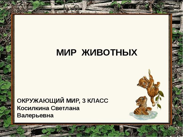 МИР ЖИВОТНЫХ ОКРУЖАЮЩИЙ МИР, 3 КЛАСС Косилкина Светлана Валерьевна