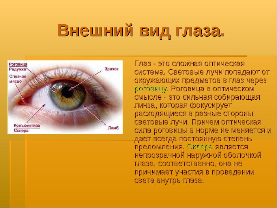 Внешний вид глаза. Глаз - это сложная оптическая система. Световые лучи попад...
