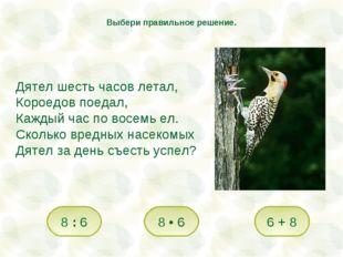 Дятел шесть часов летал, Короедов поедал, Каждый час по восемь ел. Сколько вр