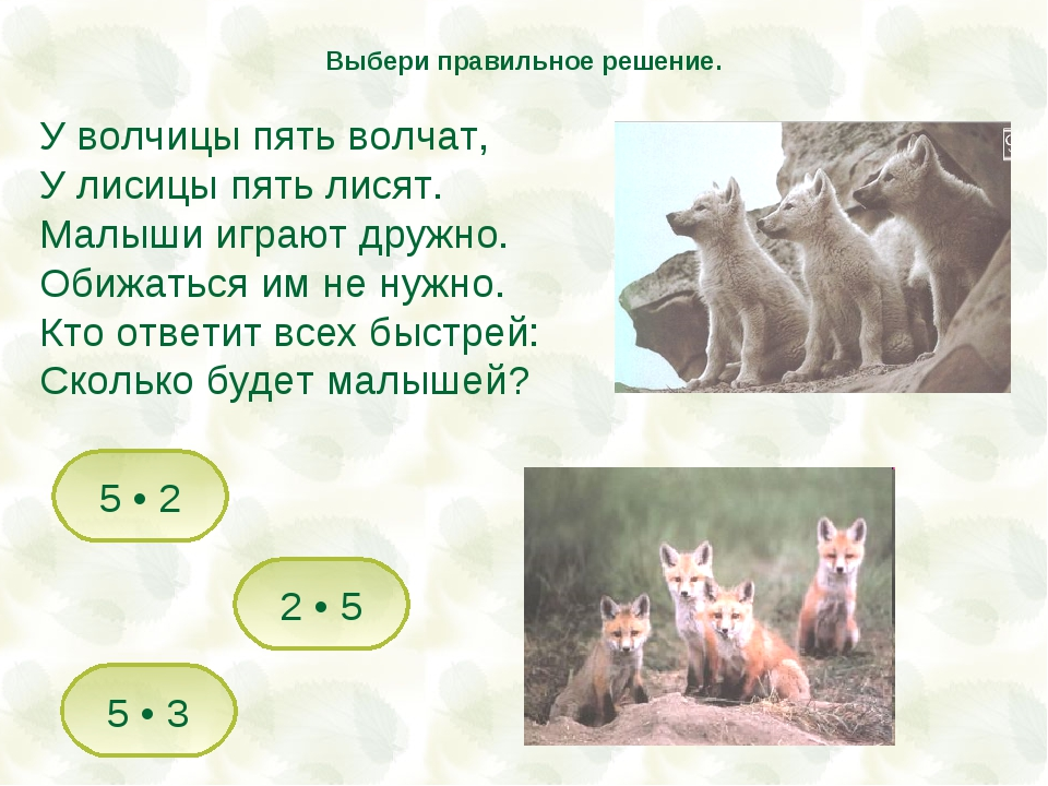 У волчицы пять волчат, У лисицы пять лисят. Малыши играют дружно. Обижаться и...
