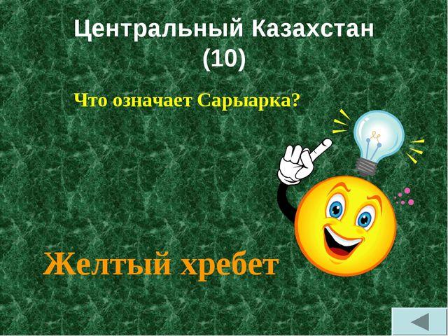 Центральный Казахстан (10) Что означает Сарыарка? Желтый хребет