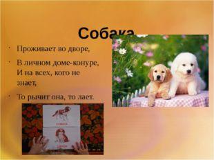 Собака Проживает во дворе, В личном доме-конуре, И на всех, кого не знает,