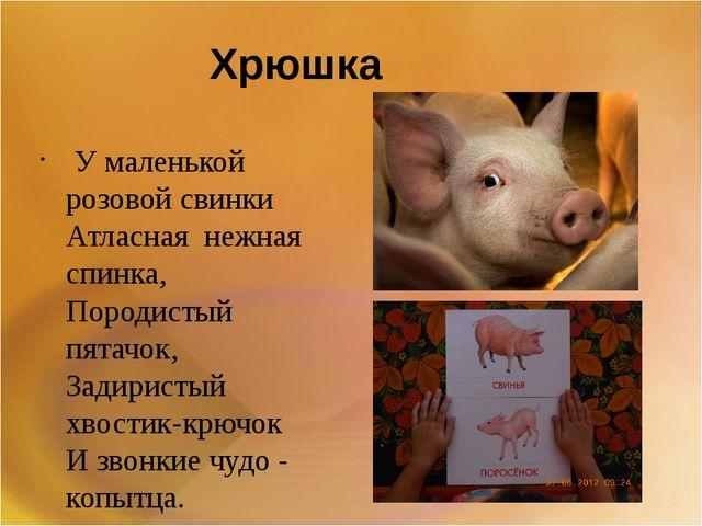 Хрюшка У маленькой розовой свинки Атласная нежная спинка, Породистый пятачок...