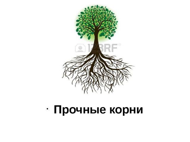Прочные корни