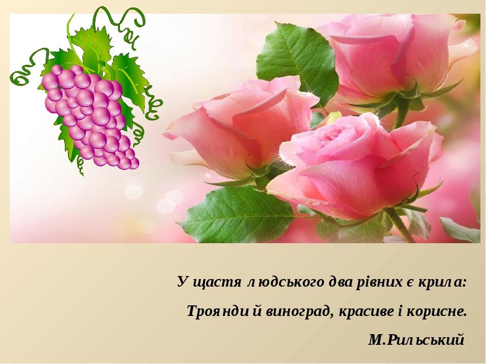 У щастя людського два рівних є крила: Троянди й виноград, красиве і корисне....