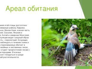 Ареал обитания Ареал обитания этой птицы достаточно обширный: северные районы