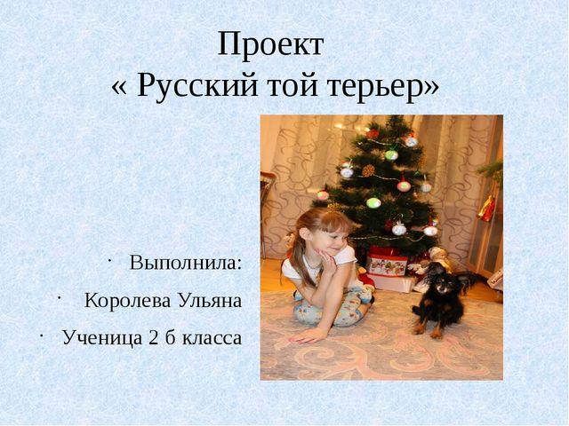 Проект « Русский той терьер» Выполнила: Королева Ульяна Ученица 2 б класса