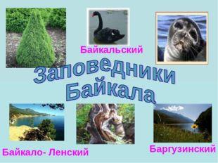 Байкало- Ленский Баргузинский Байкальский