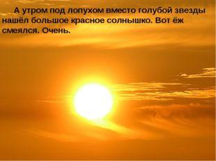 А утром под лопухом вместо голубой звезды нашёл большое красное солнышко. Во