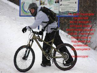 По действующим правилам велосипедист, который ведет велосипед рядом с собой,